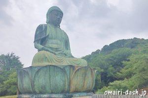 犬山成田山(愛知県犬山市)新生大仏