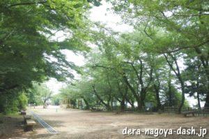 桜の馬場(小牧山史跡公園)