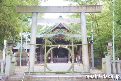 深川神社(愛知県瀬戸市)三の鳥居と茅の輪