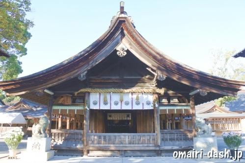尾張大國霊神社(愛知県稲沢市)拝殿