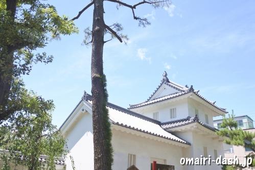 おあむの松(大垣城)