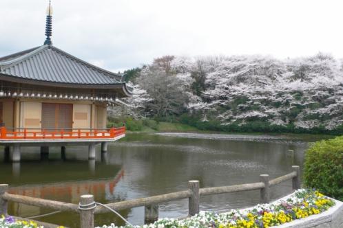 安倍文殊院(奈良県桜井市)金閣浮御堂