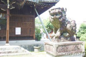 常葉神社(岐阜県大垣市)狛犬