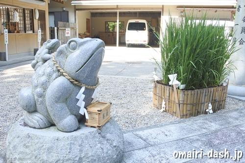 猿田彦三河神社(愛知県幸田町)親子カエルの石像