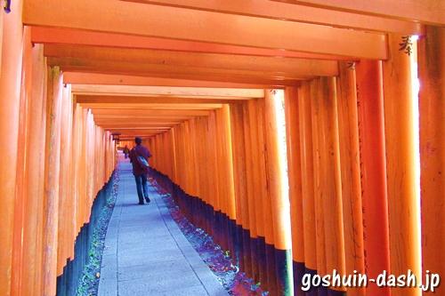伏見稲荷大社(京都市伏見区)千本鳥居
