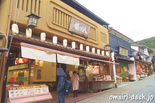 本家西尾八ッ橋清水店