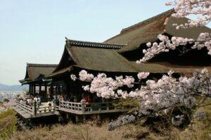 清水の舞台(春の桜)