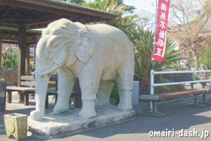 雲龍山宝蔵院(名古屋市中川区)象(ゾウ)の石像
