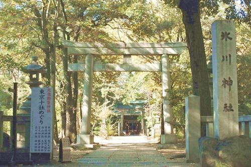 赤坂氷川神社(東京都港区)鳥居と社号標
