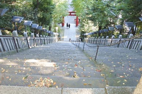 愛宕神社(東京都港区)出世の石段(降りるとき)