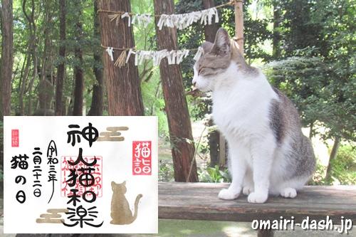 玉野御嶽神社(春日井市玉野町)猫・御朱印