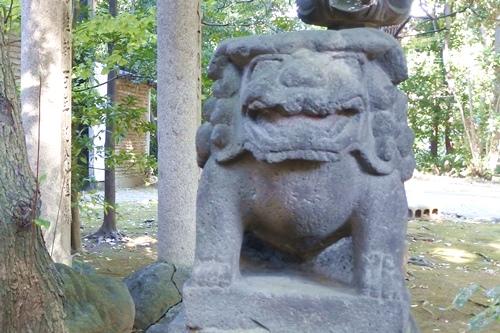 赤坂氷川神社(東京都港区)狛犬