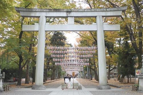大國魂神社(東京都府中市)大鳥居