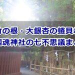 大國魂神社(東京都府中市)の七不思議まとめ